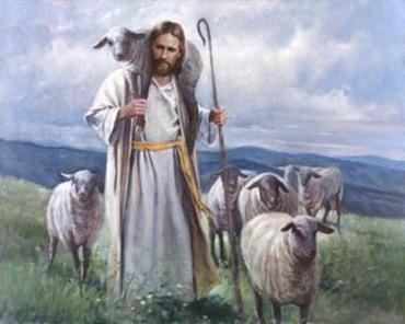 Gentle Shepherd